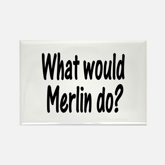 Merlin Rectangle Magnet