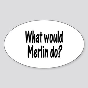 Merlin Oval Sticker