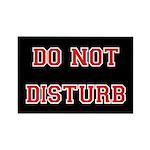 Do Not Disturb Magnets