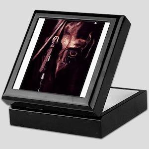 Friesian Keepsake Box