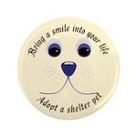 Bring a Smile Adopt 3.5