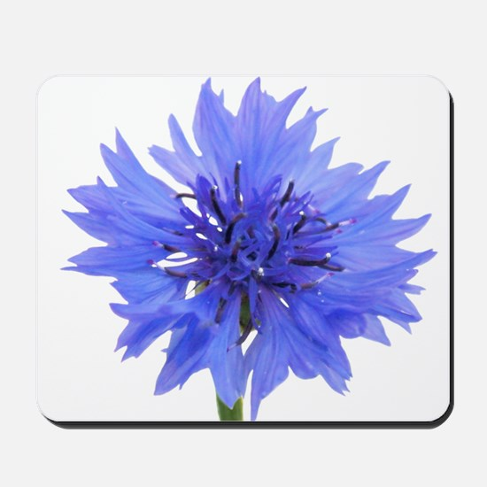blue cornflower Mousepad
