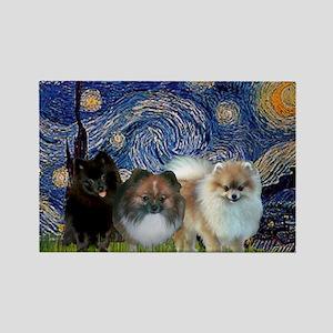 Starry/3 Pomeranians Rectangle Magnet