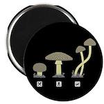 Mushrooms 2.25