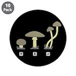 Mushrooms 3.5