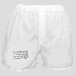 Kama Sutra Music Notes Boxer Shorts
