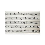 Kama Sutra Music Notes Rectangle Magnet (100 pack)