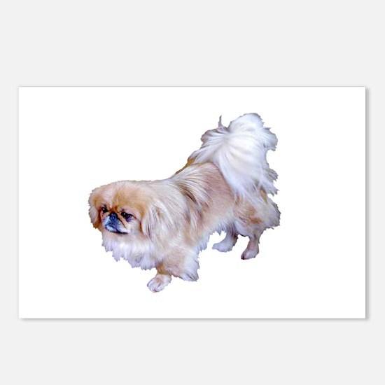 Pekingese Dog Postcards (Package of 8)