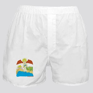 Temperance Boxer Shorts