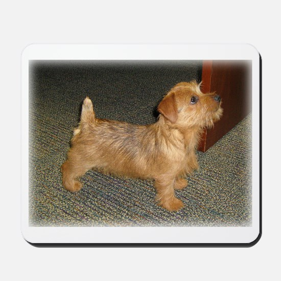 Whimsical Norfolk Terrier Puppy Mousepad