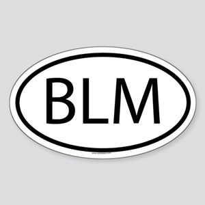 BLM Oval Sticker