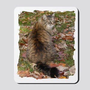Maine Coon cat Fall leaves Mousepad