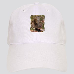 Maine Coon cat Fall leaves Cap