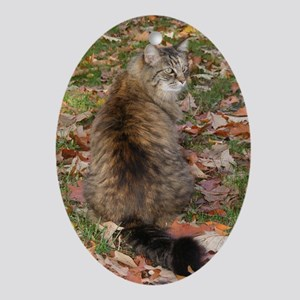 Maine Coon cat Fall leaves Oval Ornament
