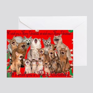 Funny cat christmas greeting cards cafepress somali cat christmas cards pk of 20 m4hsunfo