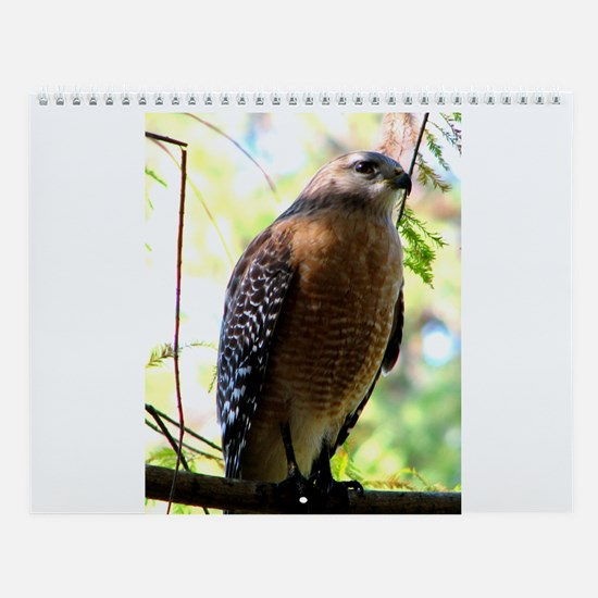 Unique Birders Wall Calendar