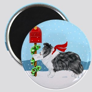 Bi Black Sheltie Mail Magnet