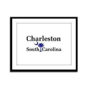 Charleston South Carolina Framed Panel Print
