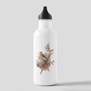 Cedar Waxwing Birds Stainless Water Bottle 1.0L