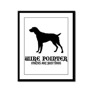 German Wirehaired Pointer Framed Panel Print