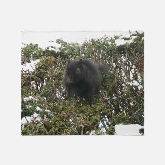 Cute Black squirrel Throw Blanket