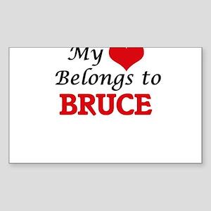 My heart belongs to Bruce Sticker