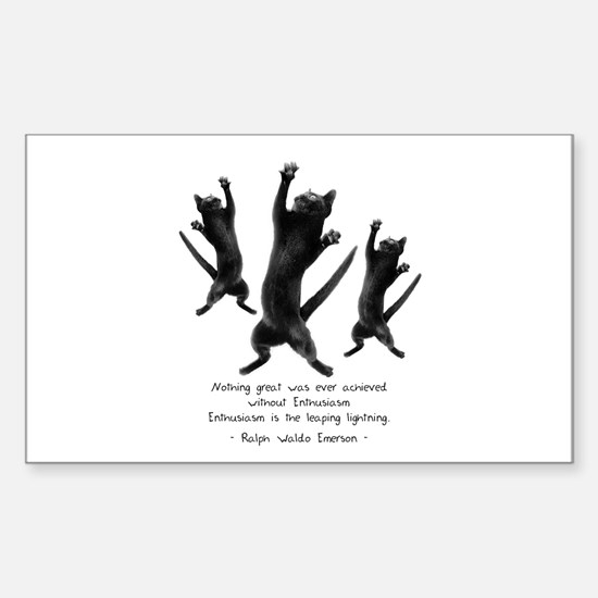 Enthusiastic Cats Rectangle Decal