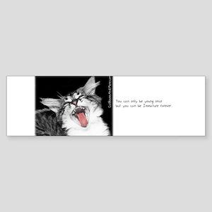 Wild Cat-And-Quote Bumper Sticker
