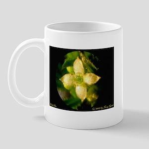 Herbal Star Mug