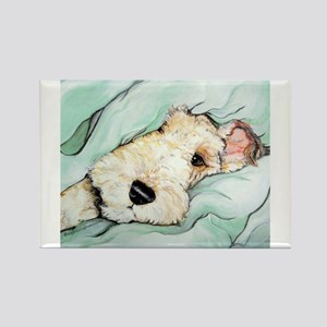 Napping Wire Fox Terrier Rectangle Magnet