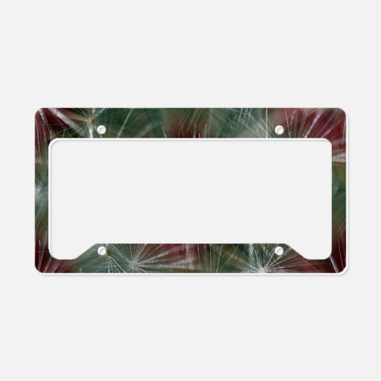 Unique Allergy License Plate Holder