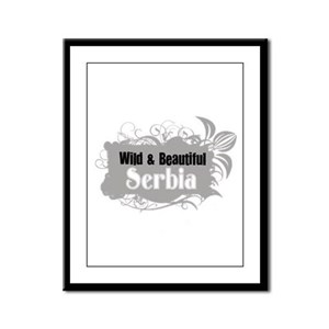 Wild and Beautiful Serbia Framed Panel Print