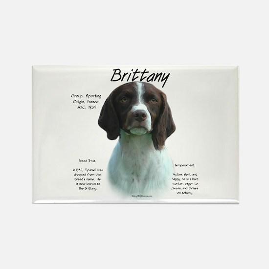 Brittany (liver) Rectangle Magnet (10 pack)