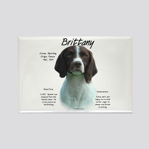 Brittany (liver) Rectangle Magnet