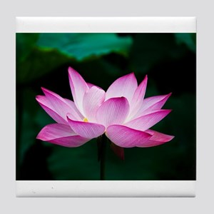 Indian Lotus Flower Tile Coaster
