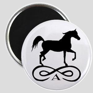 Infinity Arabian Horse Magnet