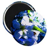 Apple Blossom Blues Magnet