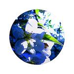 Apple Blossom Blues 3.5