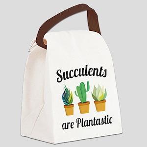 Succulents Are Plantastic Canvas Lunch Bag
