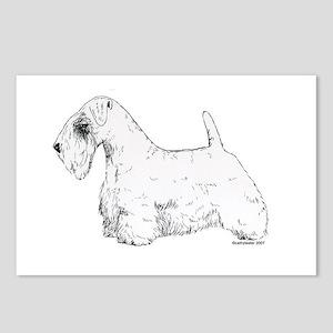 Sealyham Terrier Postcards (Package of 8)