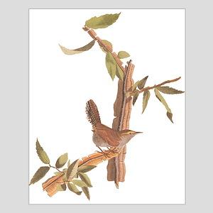 Bewick's Wren Audubon Vintage Art Posters