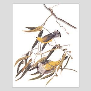 Prothonotary Warbler Audubon Birds Posters