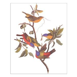 da2545181 Bird Watching Posters - CafePress