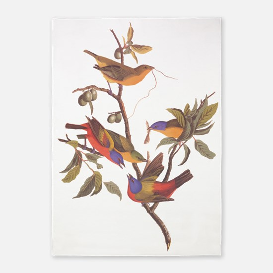 Painted Bunting Birds In Wild Olive 5'x7'a