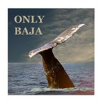 ONLY BAJA WILD SIDE WHALE Tile Coaster
