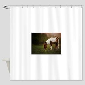 Pasture Pony Shower Curtain