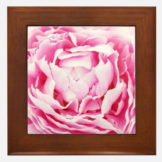 chic pastel pink peony Framed Tile