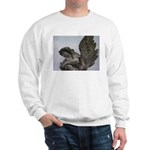 New Orleans historic cemetery Sweatshirt