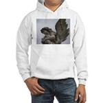 New Orleans historic cemetery Hooded Sweatshirt