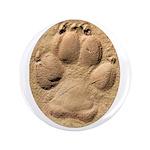 Dog Track Plain 3.5